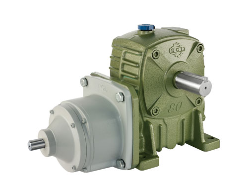 BGFD Series - Regal Two-Stage Worm Gear Reducer (Worm-Gear)